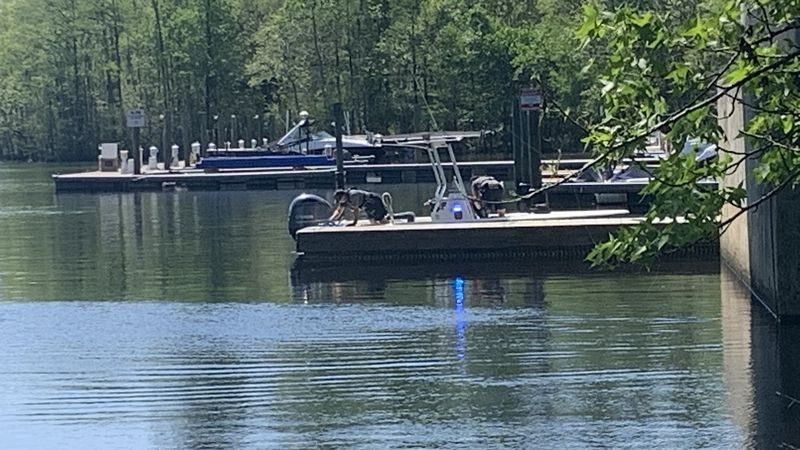 Crews were called for a possible person in the water near the S.C. 544 bridge in Socastee.
