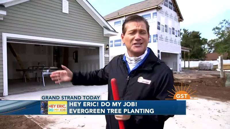 Hey Eric, Do My Job - Tree Planting