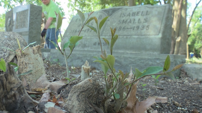 Saturday, dozens of volunteers worked to finish clearing out a once-forgotten African American...