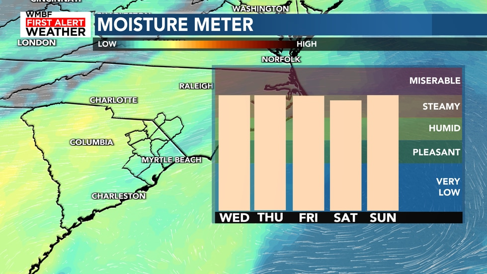 Winds continue to pump in the moisture for the high humidity and daily rain chances this week.