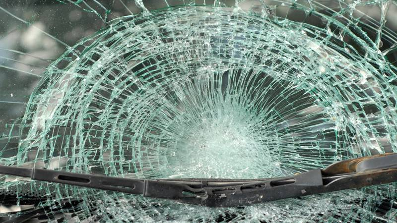 A pedestrian was struck and killed by a vehicle Tuesday night in Florence County, according to...