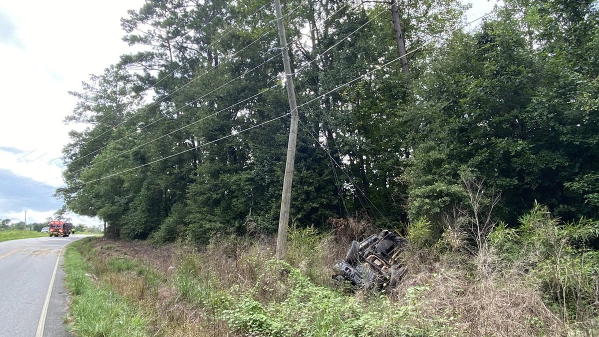 A vehicle collided with a utility pole in Galivants Ferry on Wednesday, leaving two people hurt.