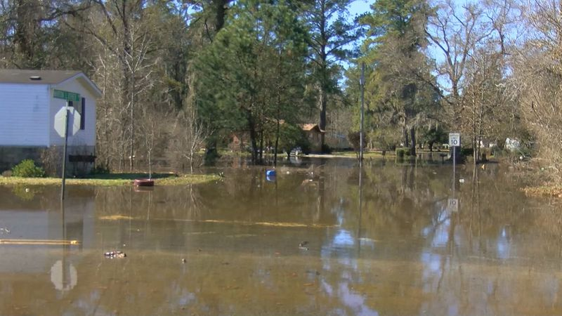 Flooding along Bucksport Road and Martin Luther Drive in the Bucksport community. (SOURCE: WMBF...