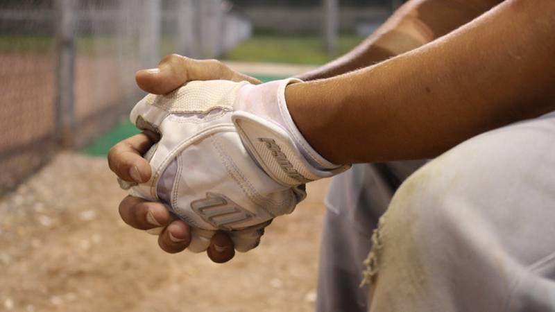 A proposal by Major League Baseball would dissolve the Lexington Legends minor league team.