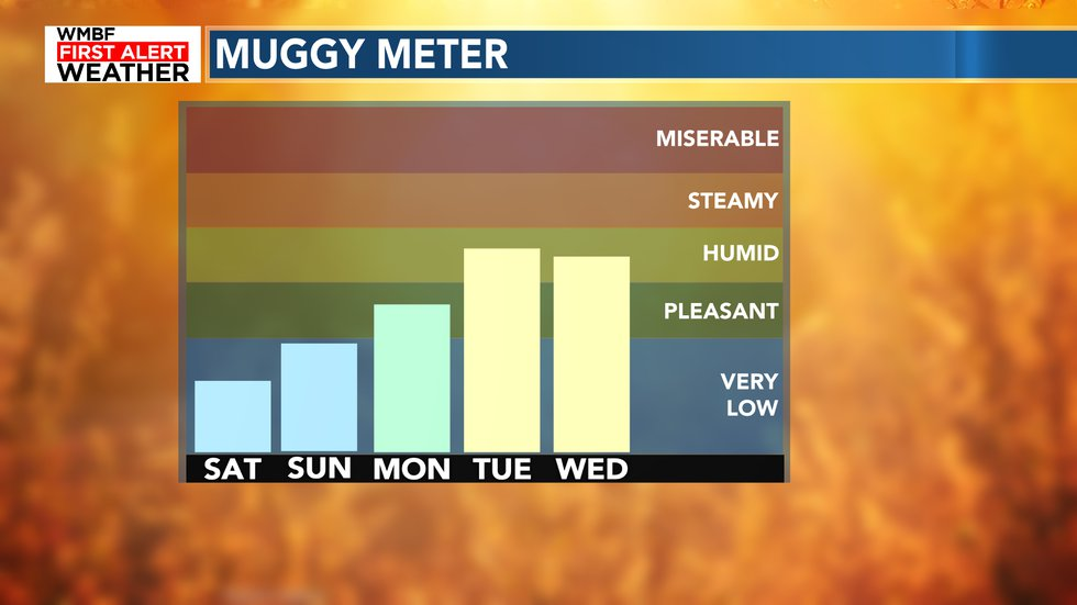 Humidity will return by next week providing that taste of summer.
