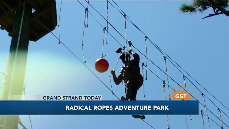 Taking to the ropes at Radical Ropes Adventure Park