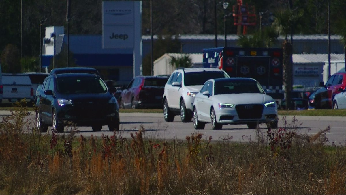 SCHP says both drivers and pedestrians can do their part to prevent fatalities. (Source:...