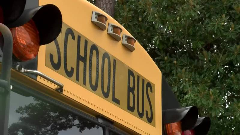 Group wants applied behavioral analysis therapy in Horry County Schools (Source: WMBF News)
