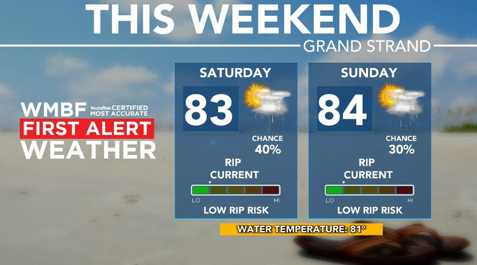 Humid with a few showers and storms this weekend.