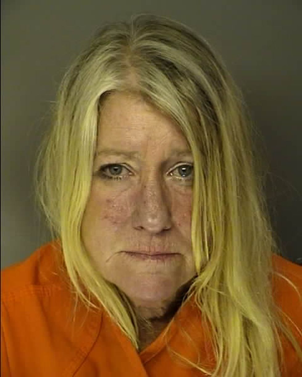 PAUL, MICHELLE NOREEN DRIVING UNDER THE INFLUENCE - 1ST OFFENSE   /   Pre-Trial   /   NO BAIL SET