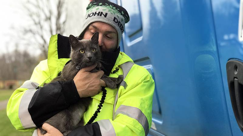 Cat owner and Ashes reunited
