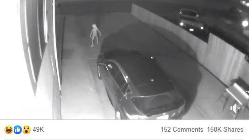 A bizarre creature was captured on security camera wandering down a driveway.