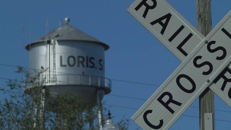 The 42nd annual Loris Bog-Off Festival is this weekend, a highly anticipated community event...