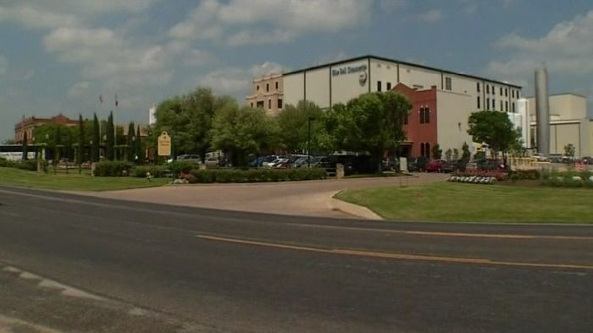 Blue Bell plant