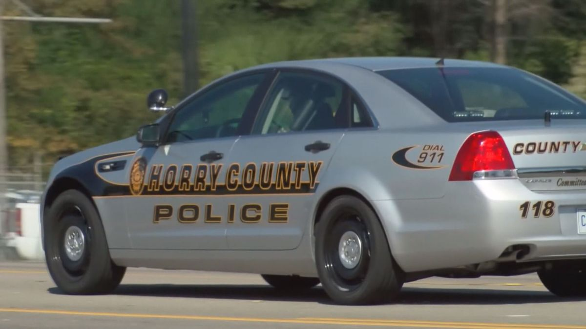 Horry County is considering using a pay scale for public safety employees. (Source: WMBF News)
