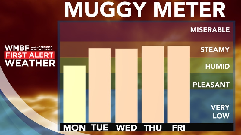 Hello, humidity! It's back this week.