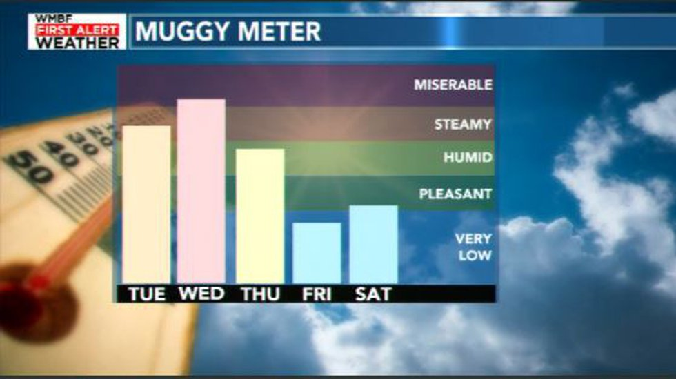 Muggy Meter This Week