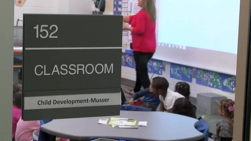 Teachers in Horry County could receive a 6% raise in the 2019-2020 school year (Source: WMBF...