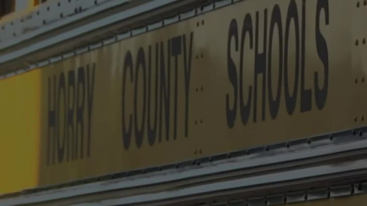Horry County school leader says information spreading about a 'special board meeting' is...