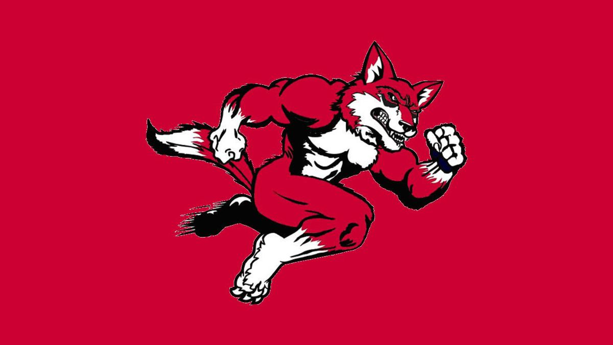 Hartsville Red Foxes